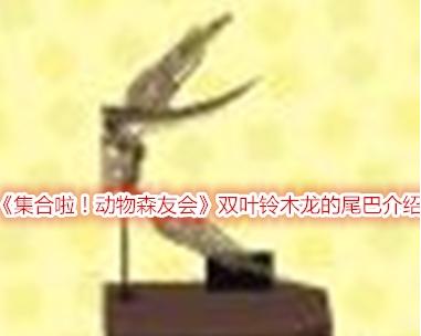 集合啦!动物森友会双叶铃木龙的尾巴介绍