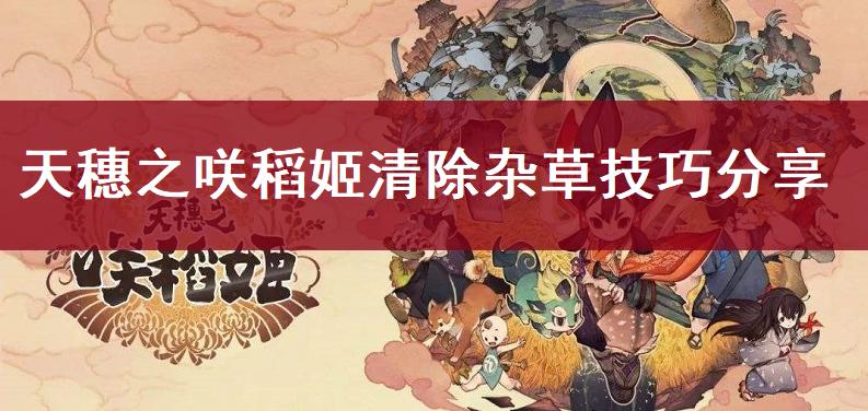 天穗之咲稻姬清除雜草技巧分享