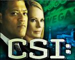 CSI犯罪现场:致命意图